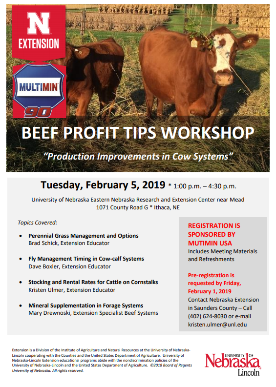 Beef Workshop
